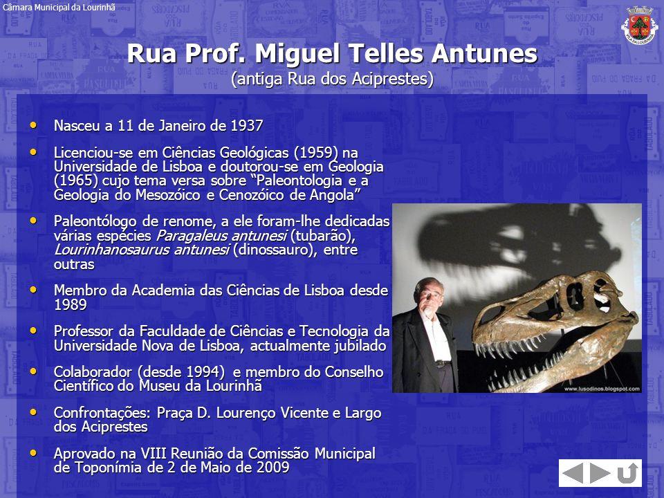 Nasceu a 11 de Janeiro de 1937 Nasceu a 11 de Janeiro de 1937 Licenciou-se em Ciências Geológicas (1959) na Universidade de Lisboa e doutorou-se em Ge