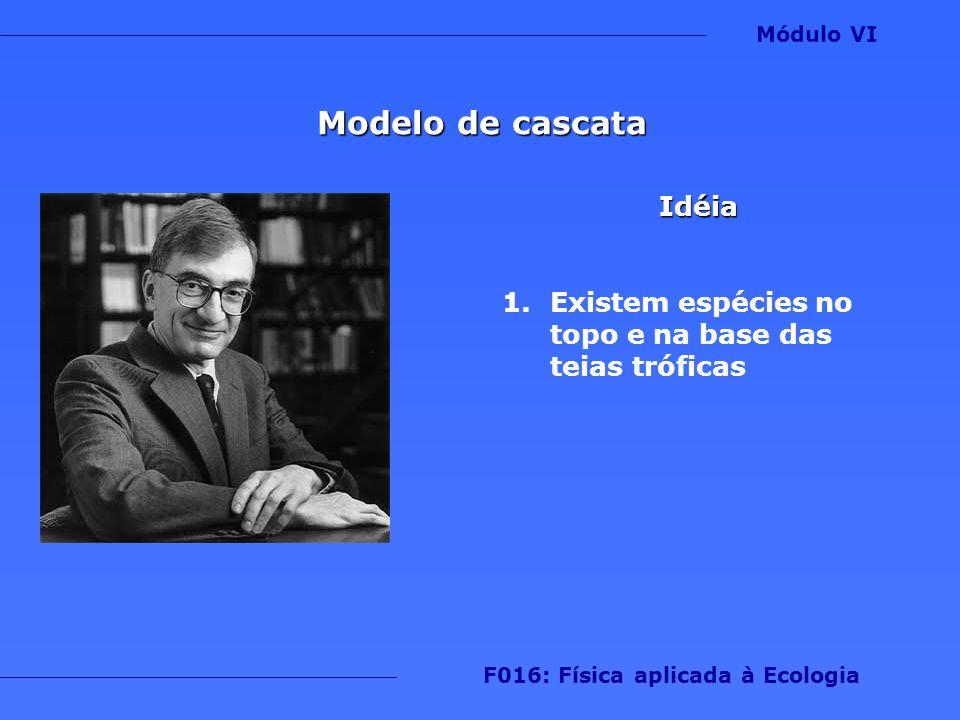 Modelo de cascata Idéia 1.Existem espécies no topo e na base das teias tróficas Módulo VI F016: Física aplicada à Ecologia