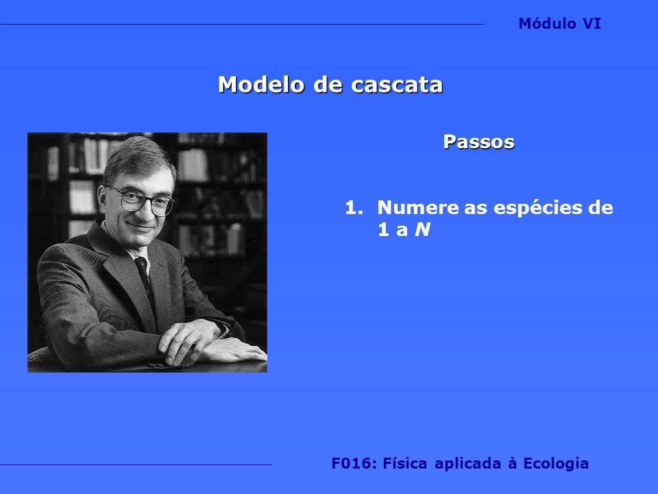Modelo de cascata Passos 1.Numere as espécies de 1 a N Módulo VI F016: Física aplicada à Ecologia