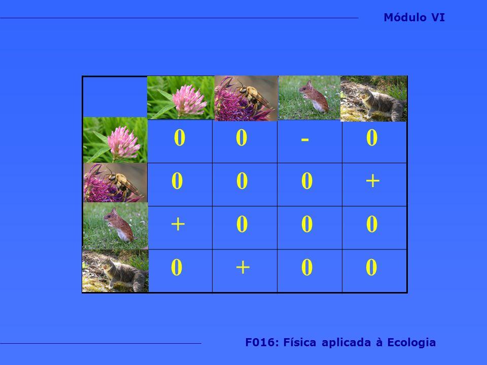 0 0 - 0 0 0 0 + + 0 0 0 0 + 0 0 Módulo VI F016: Física aplicada à Ecologia