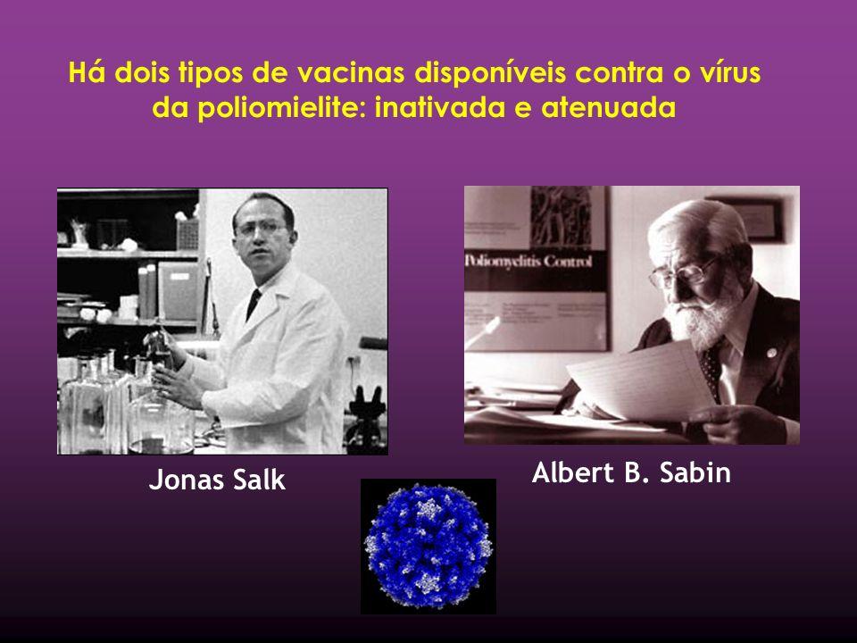 Há dois tipos de vacinas disponíveis contra o vírus da poliomielite: inativada e atenuada Jonas Salk Albert B.