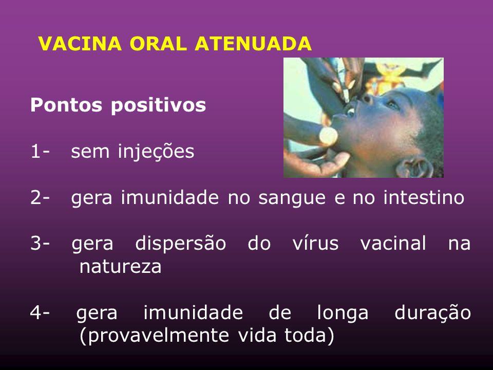 VACINA ORAL ATENUADA Pontos positivos 1- sem injeções 2- gera imunidade no sangue e no intestino 3- gera dispersão do vírus vacinal na natureza 4- gera imunidade de longa duração (provavelmente vida toda)