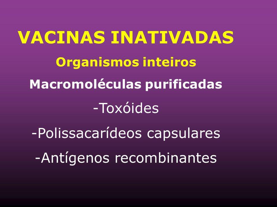 VACINAS INATIVADAS Organismos inteiros Macromoléculas purificadas -Toxóides -Polissacarídeos capsulares -Antígenos recombinantes
