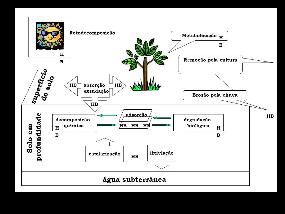 água subterrânea lixiviação Solo em profundidade superfície do solo Metabolização capilarização HB adsorção HB decomposição química degradação biológi