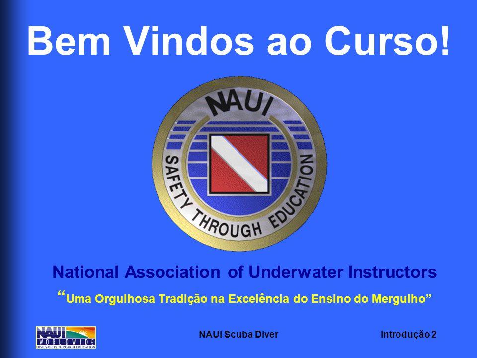Introdução 2NAUI Scuba Diver Bem Vindos ao Curso! National Association of Underwater Instructors Uma Orgulhosa Tradição na Excelência do Ensino do Mer