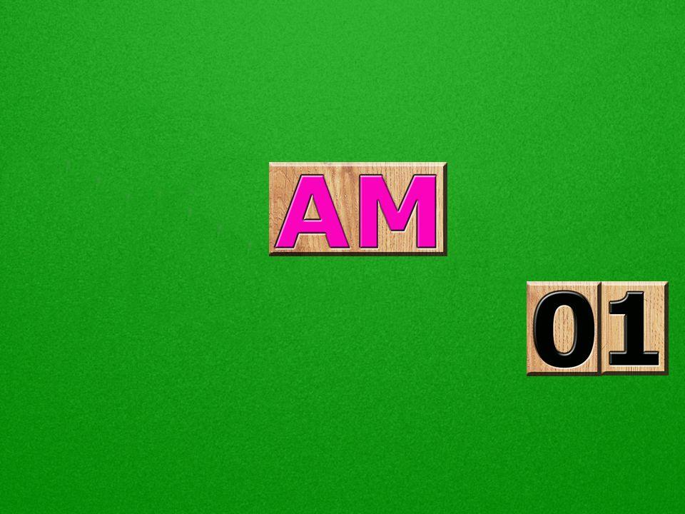 AM é o radical relativo a amor. Em esperanto, todos os substantivos terminam com a letra O, então, AMO é O AMOR, substantivo, nome próprio, e essa é a