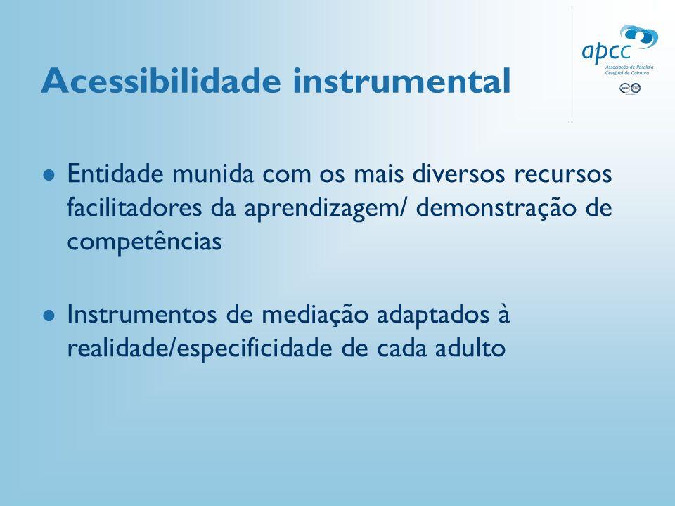 Acessibilidade instrumental Entidade munida com os mais diversos recursos facilitadores da aprendizagem/ demonstração de competências Instrumentos de
