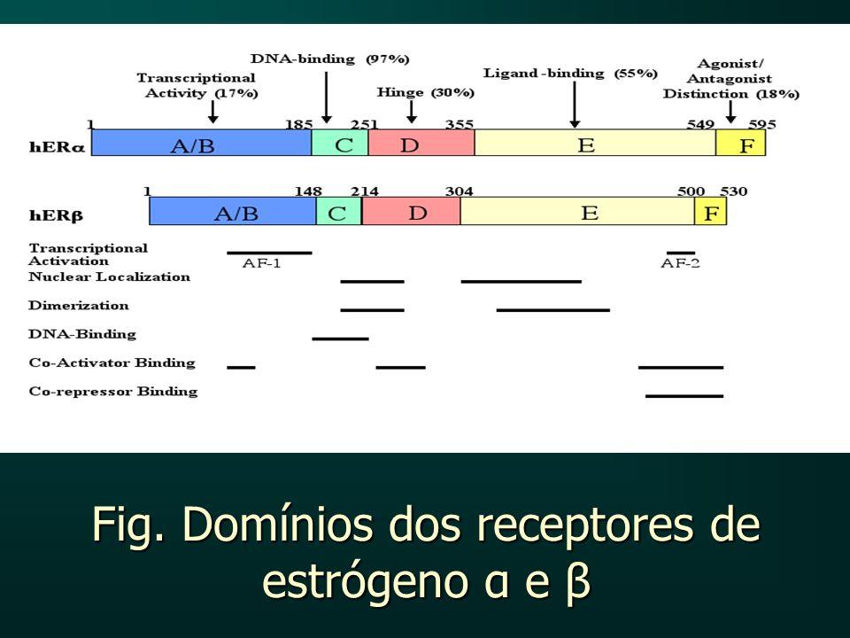 Fig. Domínios dos receptores de estrógeno α e β