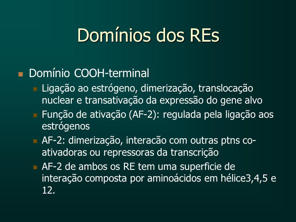 Domínios dos REs Domínio COOH-terminal Ligação ao estrógeno, dimerização, translocação nuclear e transativação da expressão do gene alvo Função de ati