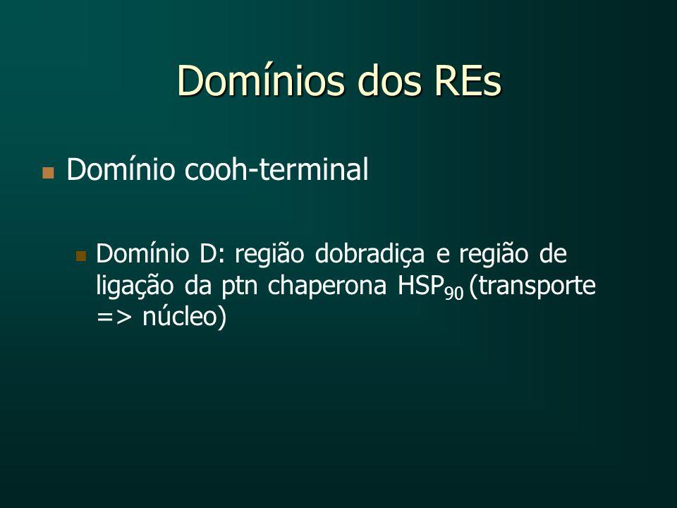 Domínios dos REs Domínio cooh-terminal Domínio D: região dobradiça e região de ligação da ptn chaperona HSP 90 (transporte => núcleo)