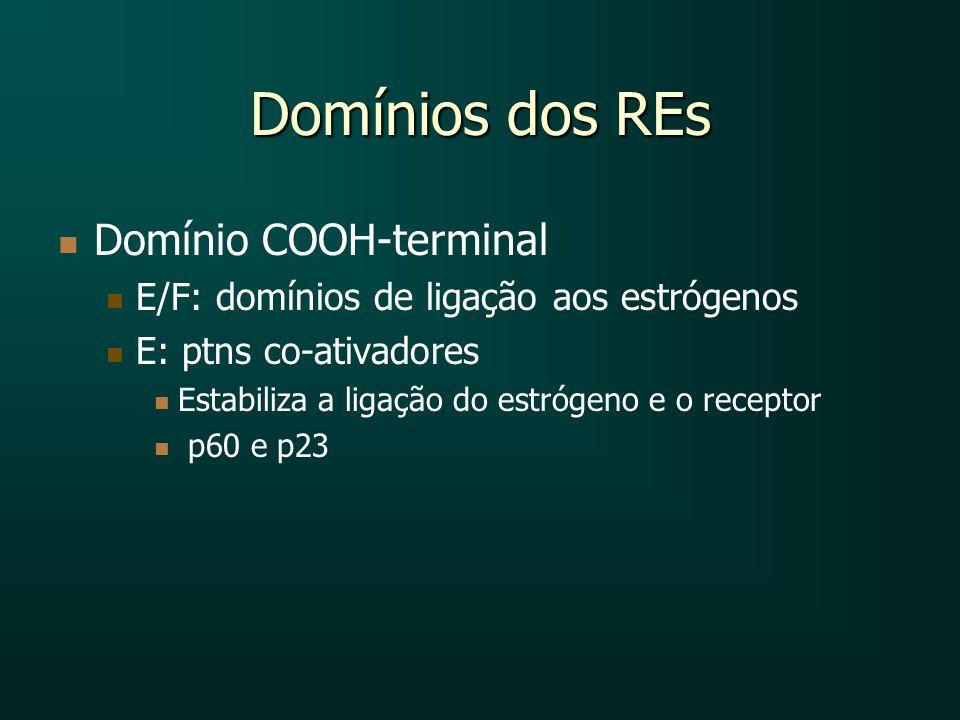 Domínios dos REs Domínio COOH-terminal E/F: domínios de ligação aos estrógenos E: ptns co-ativadores Estabiliza a ligação do estrógeno e o receptor p6