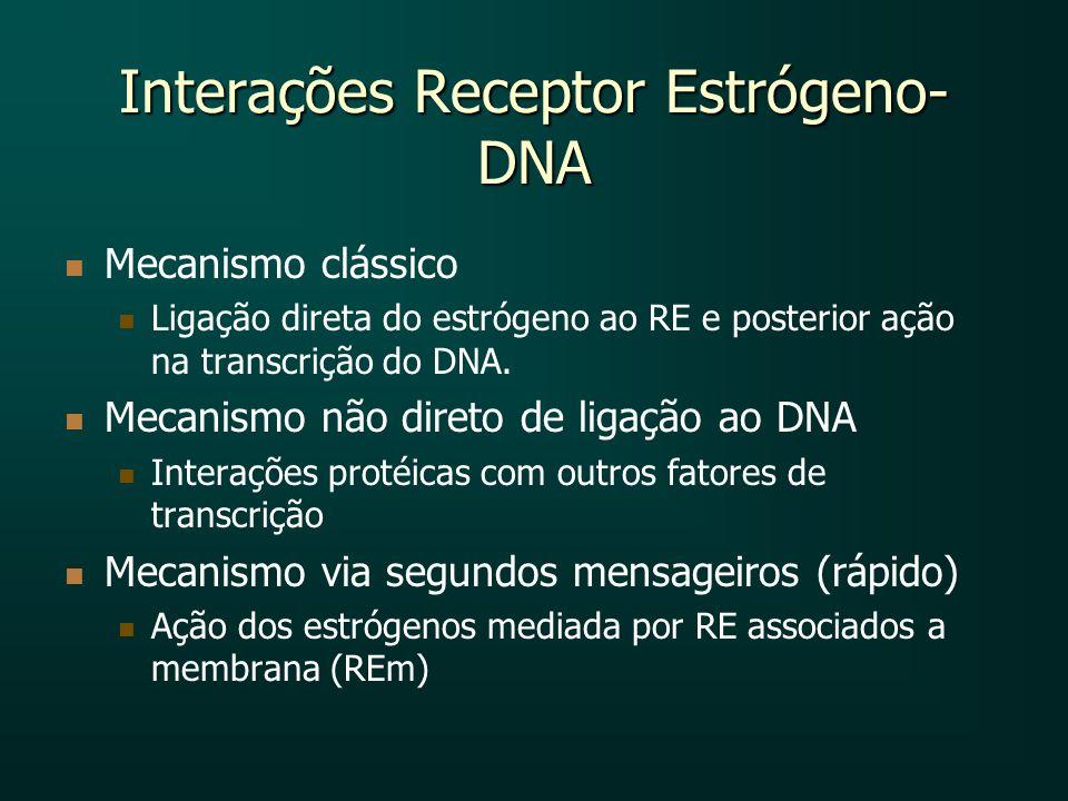 Interações Receptor Estrógeno- DNA Mecanismo clássico Ligação direta do estrógeno ao RE e posterior ação na transcrição do DNA. Mecanismo não direto d