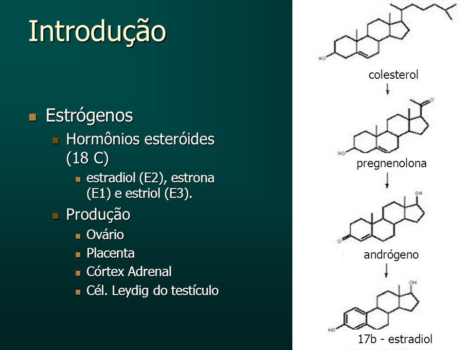 Introdução Estrógenos Estrógenos Hormônios esteróides (18 C) Hormônios esteróides (18 C) estradiol (E2), estrona (E1) e estriol (E3). estradiol (E2),
