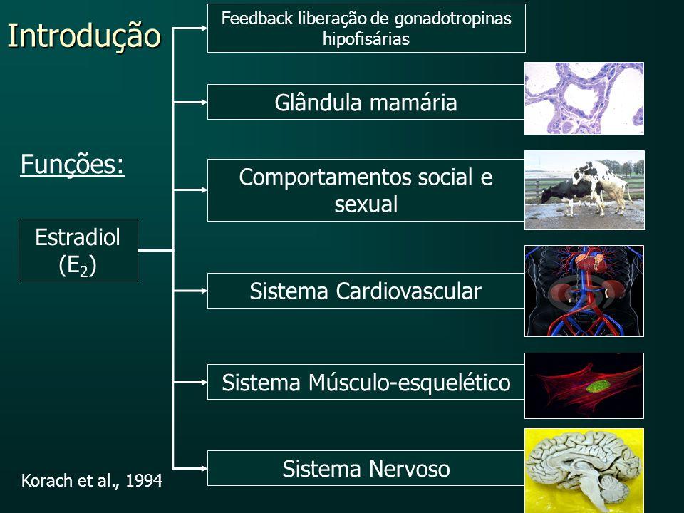 Introdução Estradiol (E 2 ) Glândula mamária Comportamentos social e sexual Sistema Cardiovascular Sistema Músculo-esquelético Sistema Nervoso Korach