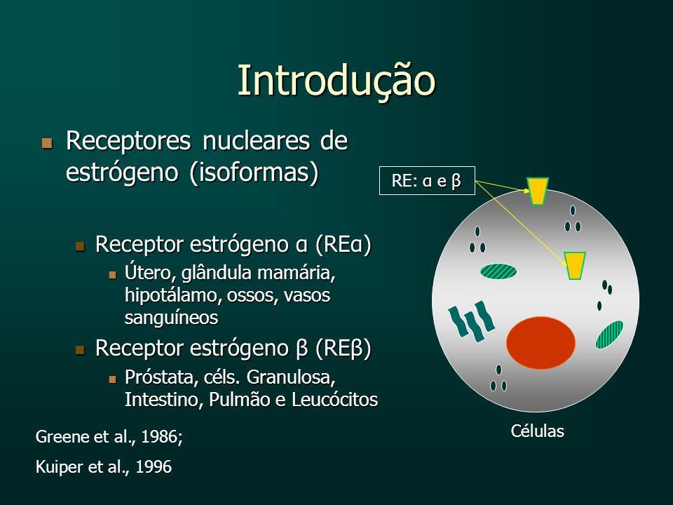 Introdução Receptores nucleares de estrógeno (isoformas) Receptores nucleares de estrógeno (isoformas) Receptor estrógeno α (REα) Receptor estrógeno α