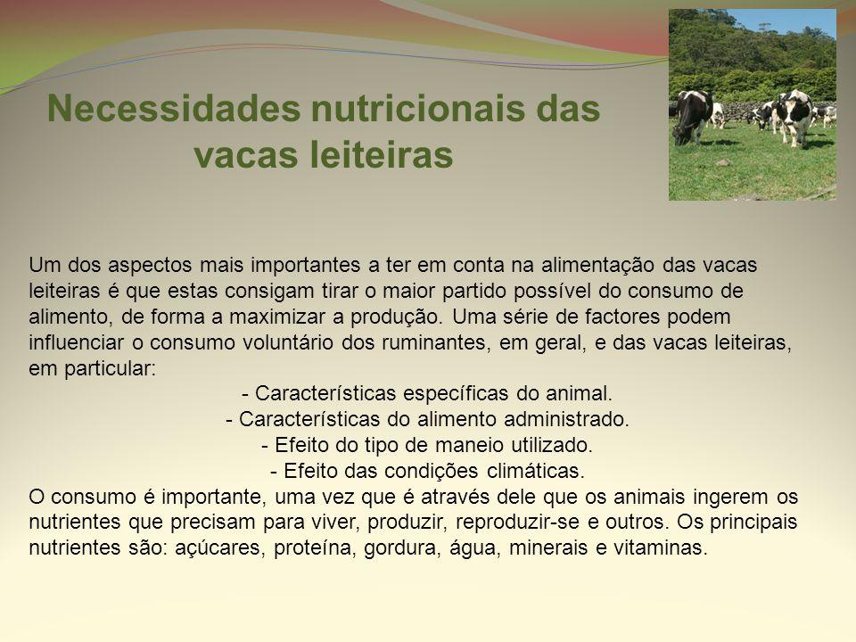 Um dos aspectos mais importantes a ter em conta na alimentação das vacas leiteiras é que estas consigam tirar o maior partido possível do consumo de a
