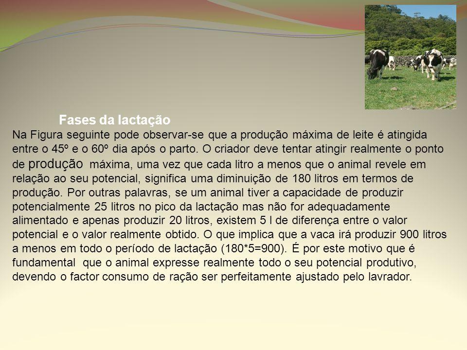 Fases da lactação Na Figura seguinte pode observar-se que a produção máxima de leite é atingida entre o 45º e o 60º dia após o parto. O criador deve t