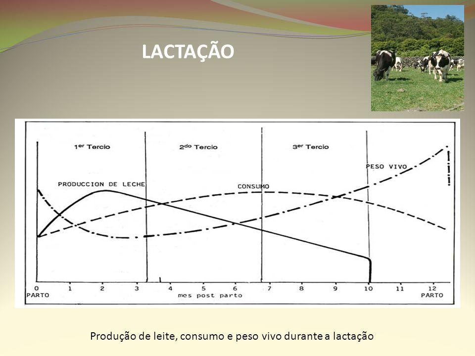 LACTAÇÃO Produção de leite, consumo e peso vivo durante a lactação