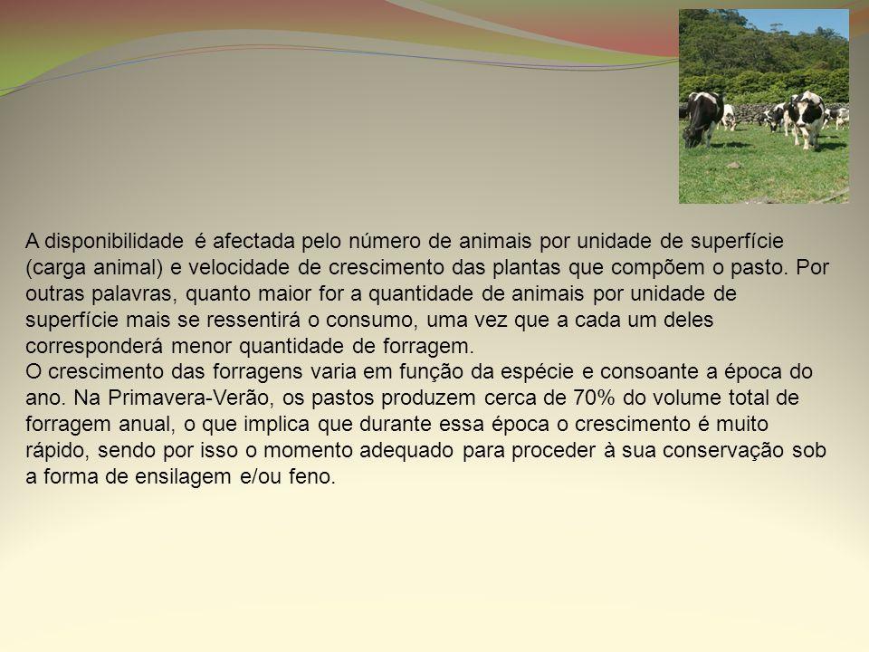 A disponibilidade é afectada pelo número de animais por unidade de superfície (carga animal) e velocidade de crescimento das plantas que compõem o pas