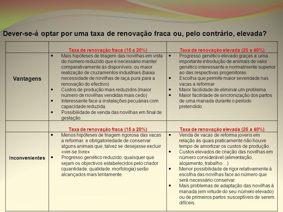TRANSFORMANDO DESAFIOS EM OPORTUNIDADES