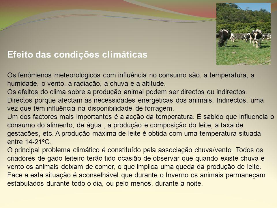 Efeito das condições climáticas Os fenómenos meteorológicos com influência no consumo são: a temperatura, a humidade, o vento, a radiação, a chuva e a