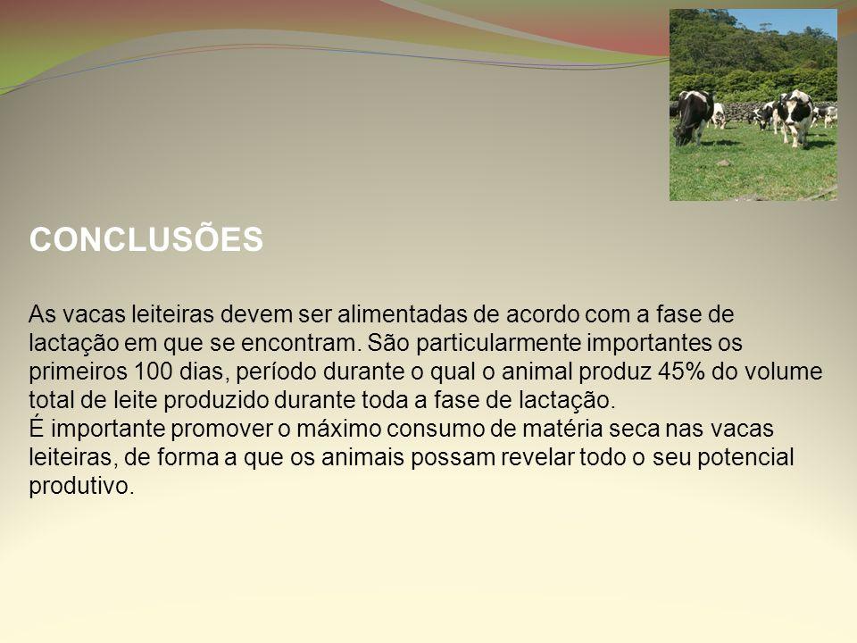 CONCLUSÕES As vacas leiteiras devem ser alimentadas de acordo com a fase de lactação em que se encontram. São particularmente importantes os primeiros