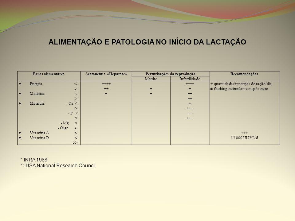 ALIMENTAÇÃO E PATOLOGIA NO INÍCIO DA LACTAÇÃO Erros alimentaresAcetonemia «Hepatose»Perturbações da reproduçãoRecomendações MetriteInfertilidade Energ