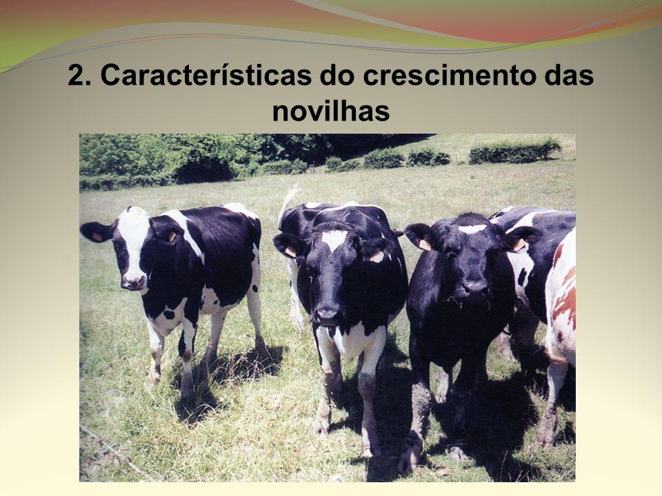NutrienteSintomas de carência nos vitelos Energia Vitelo com baixo peso à nascença, falta de desenvolvimento, crescimento lento.