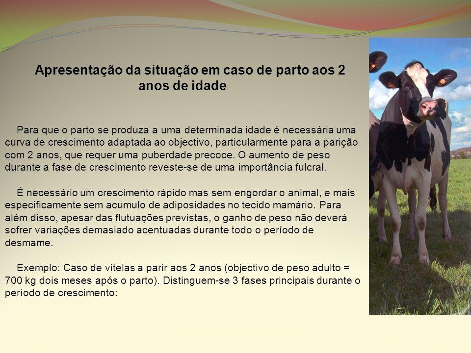 A perda de peso em vacas leiteiras é inevitável.