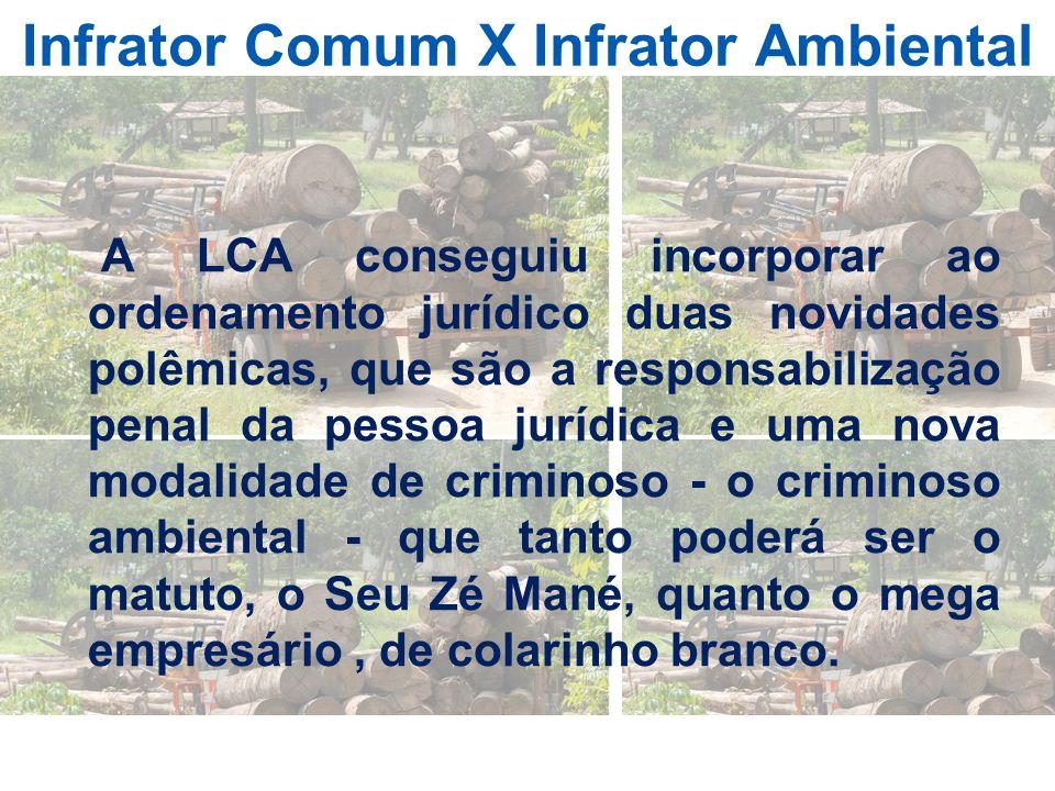 Infrator Comum X Infrator Ambiental A LCA conseguiu incorporar ao ordenamento jurídico duas novidades polêmicas, que são a responsabilização penal da