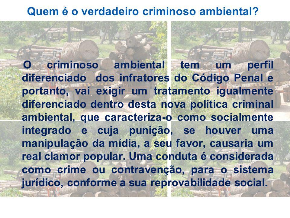 Quem é o verdadeiro criminoso ambiental? O criminoso ambiental tem um perfil diferenciado dos infratores do Código Penal e portanto, vai exigir um tra
