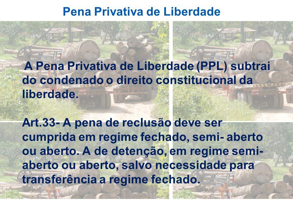 Pena Privativa de Liberdade A Pena Privativa de Liberdade (PPL) subtrai do condenado o direito constitucional da liberdade. Art.33- A pena de reclusão