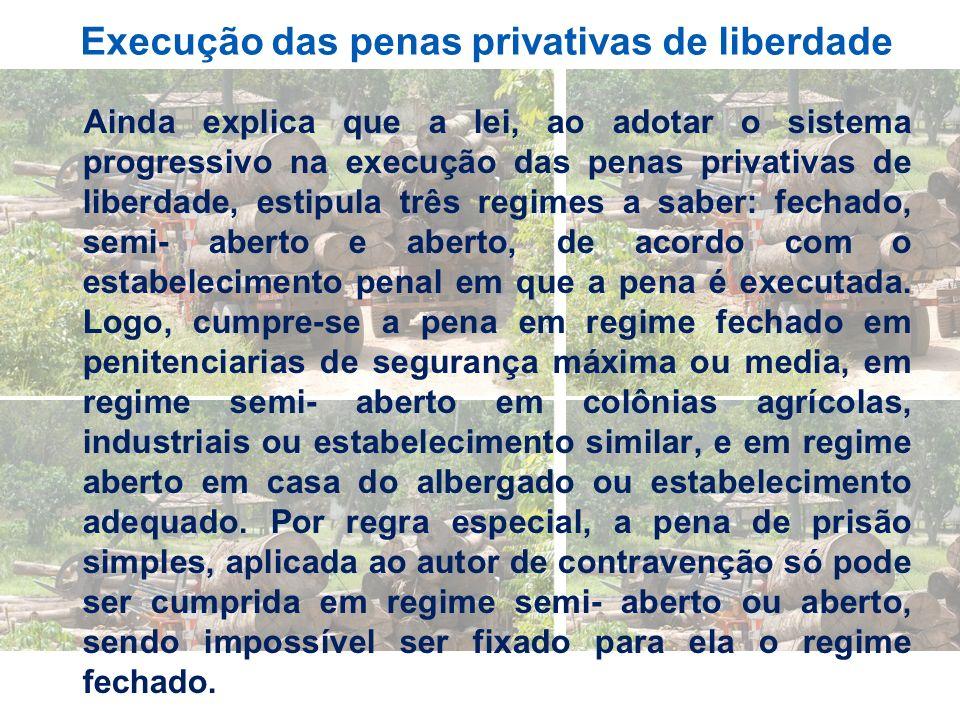 Execução das penas privativas de liberdade Ainda explica que a lei, ao adotar o sistema progressivo na execução das penas privativas de liberdade, est