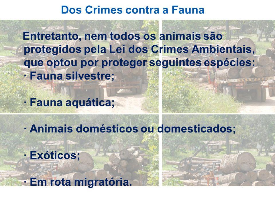 Dos Crimes contra a Fauna Entretanto, nem todos os animais são protegidos pela Lei dos Crimes Ambientais, que optou por proteger seguintes espécies: ·