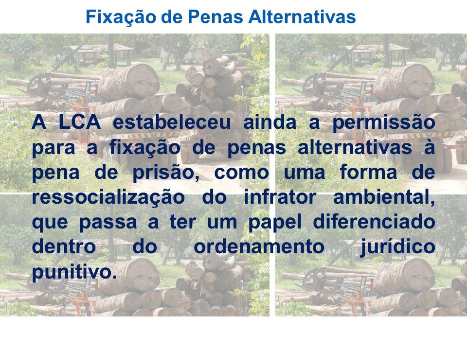 Fixação de Penas Alternativas A LCA estabeleceu ainda a permissão para a fixação de penas alternativas à pena de prisão, como uma forma de ressocializ