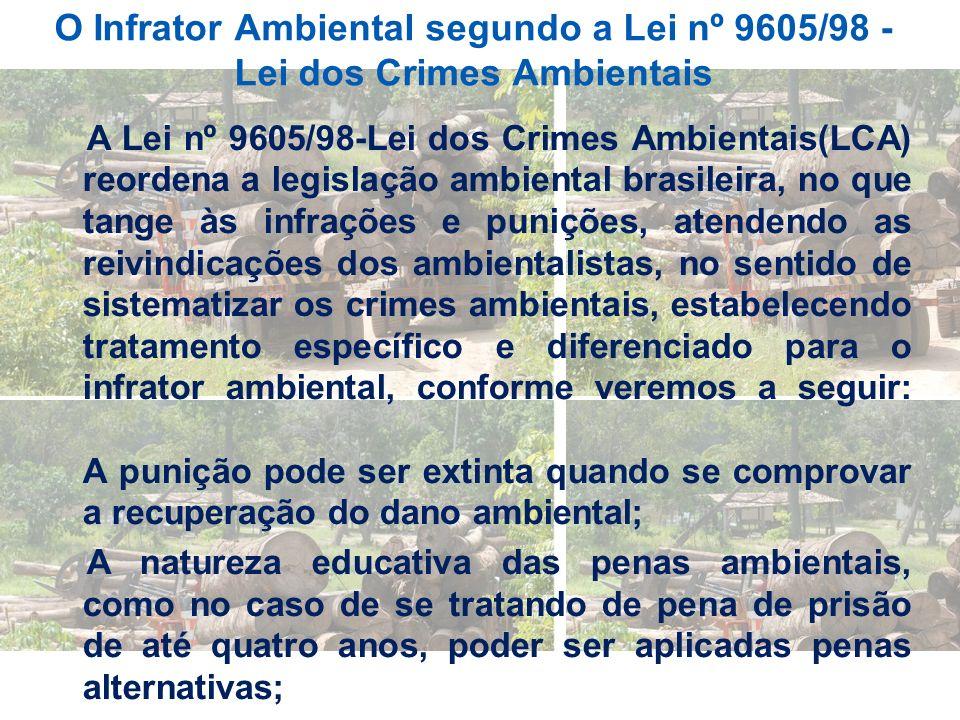O Infrator Ambiental segundo a Lei nº 9605/98 - Lei dos Crimes Ambientais A Lei nº 9605/98-Lei dos Crimes Ambientais(LCA) reordena a legislação ambien
