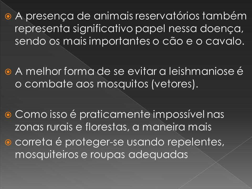 A presença de animais reservatórios também representa significativo papel nessa doença, sendo os mais importantes o cão e o cavalo. A melhor forma de
