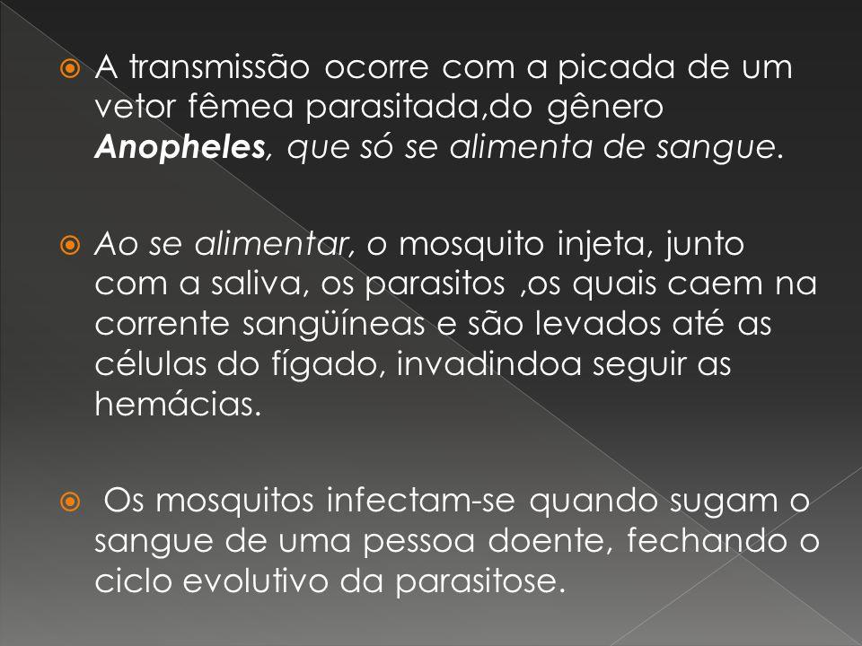 A transmissão ocorre com a picada de um vetor fêmea parasitada,do gênero Anopheles, que só se alimenta de sangue. Ao se alimentar, o mosquito injeta,