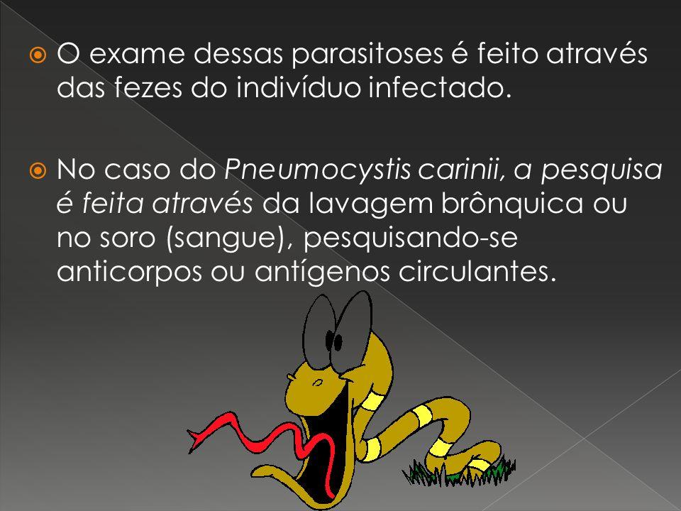 O exame dessas parasitoses é feito através das fezes do indivíduo infectado. No caso do Pneumocystis carinii, a pesquisa é feita através da lavagem br