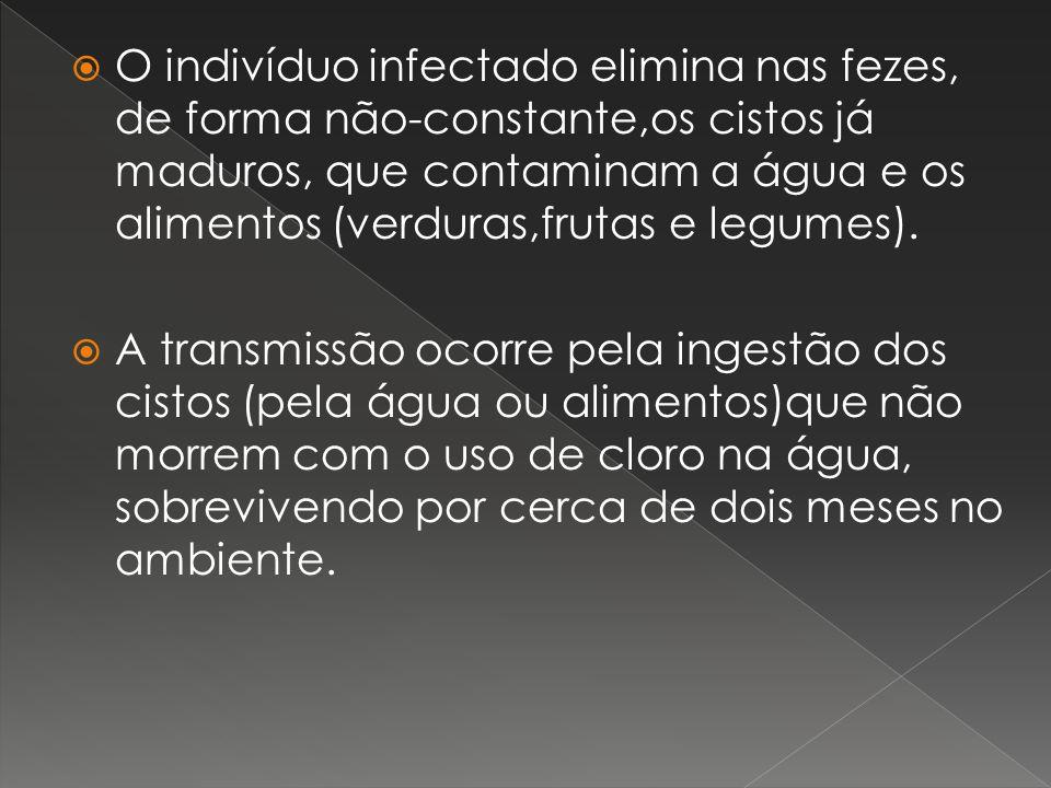 O indivíduo infectado elimina nas fezes, de forma não-constante,os cistos já maduros, que contaminam a água e os alimentos (verduras,frutas e legumes)