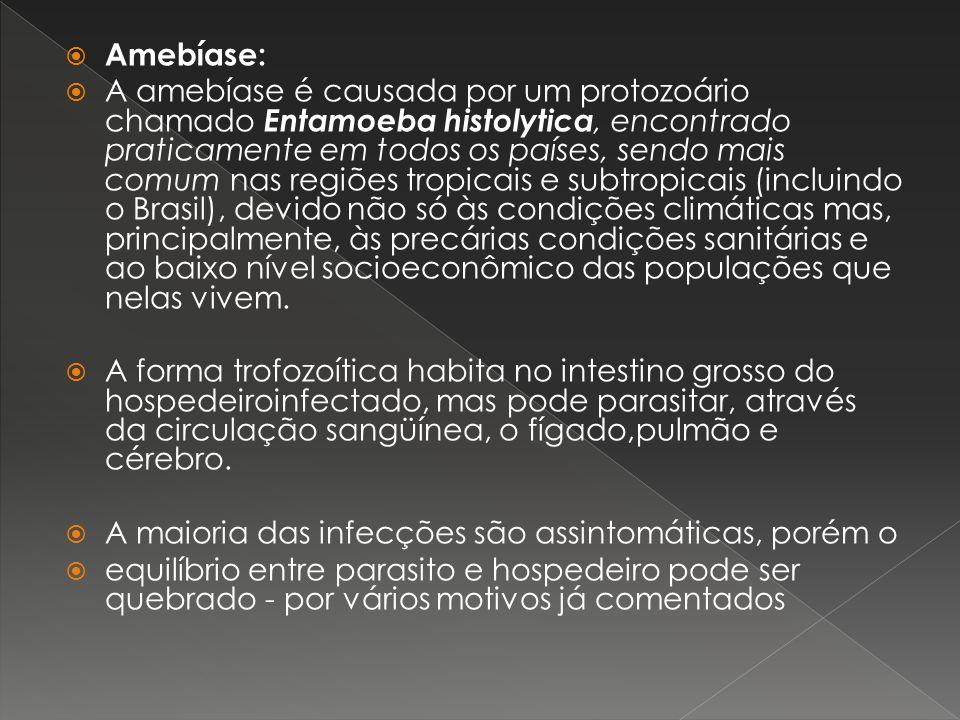 Amebíase: A amebíase é causada por um protozoário chamado Entamoeba histolytica, encontrado praticamente em todos os países, sendo mais comum nas regi