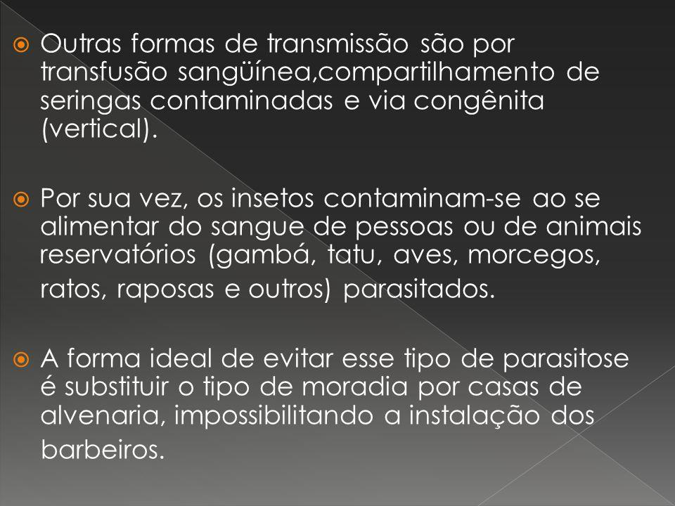 Outras formas de transmissão são por transfusão sangüínea,compartilhamento de seringas contaminadas e via congênita (vertical). Por sua vez, os inseto