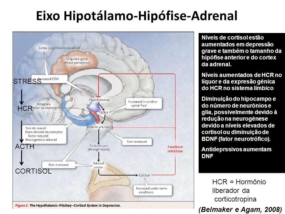 Eixo Hipotálamo-Hipófise-Adrenal (Belmaker e Agam, 2008) Níveis de cortisol estão aumentados em depressão grave e também o tamanho da hipófise anterio