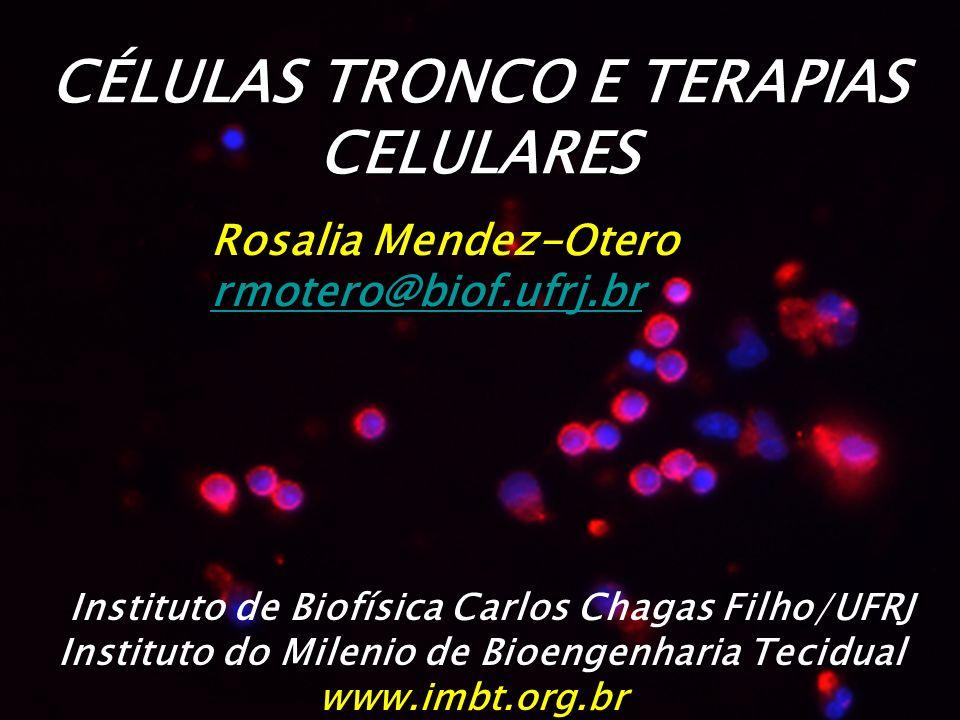 CÉLULAS TRONCO E TERAPIAS CELULARES Rosalia Mendez-Otero rmotero@biof.ufrj.br Instituto de Biofísica Carlos Chagas Filho/UFRJ Instituto do Milenio de