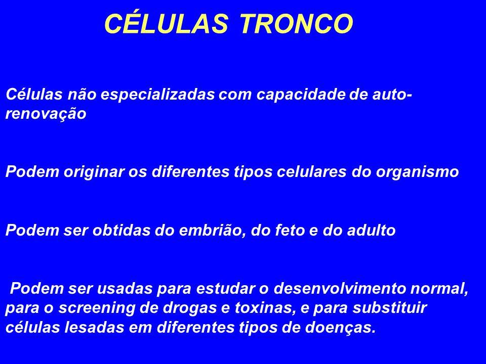 CÉLULAS TRONCO Células não especializadas com capacidade de auto- renovação Podem originar os diferentes tipos celulares do organismo Podem ser obtida