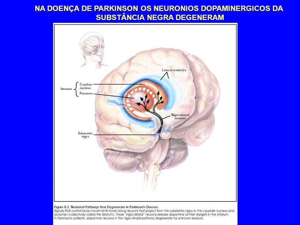 NA DOENÇA DE PARKINSON OS NEURONIOS DOPAMINERGICOS DA SUBSTÂNCIA NEGRA DEGENERAM