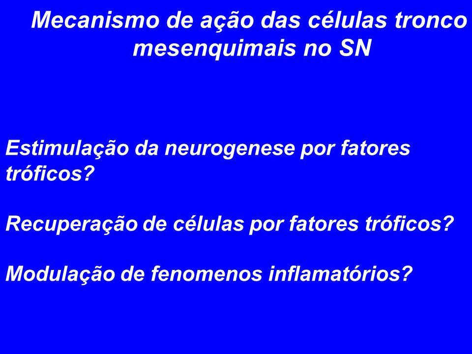 Mecanismo de ação das células tronco mesenquimais no SN Estimulação da neurogenese por fatores tróficos? Recuperação de células por fatores tróficos?