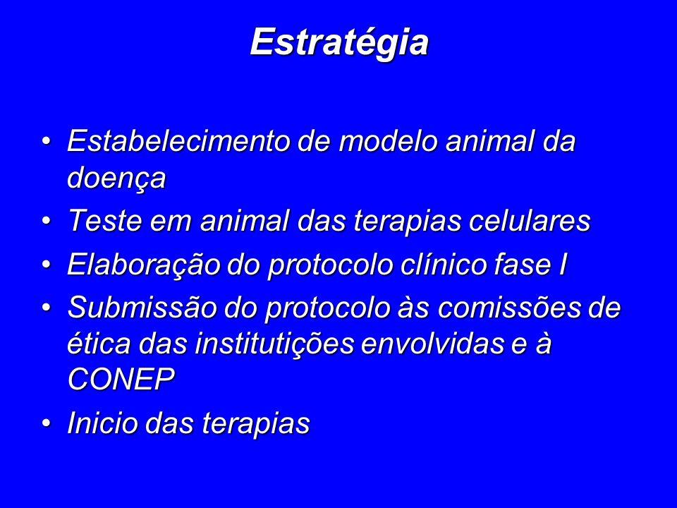 Estratégia Estabelecimento de modelo animal da doençaEstabelecimento de modelo animal da doença Teste em animal das terapias celularesTeste em animal
