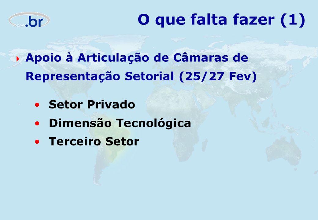 O que falta fazer (1) Setor Privado Dimensão Tecnológica Terceiro Setor Apoio à Articulação de Câmaras de Representação Setorial (25/27 Fev)