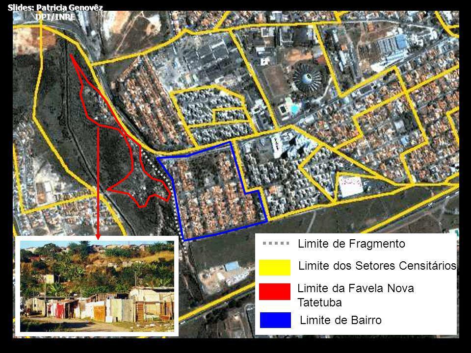 Limite dos Setores Censitários Limite da Favela Nova Tatetuba Limite de Bairro Limite de Fragmento Slides: Patricia Genovêz DPI/INPE